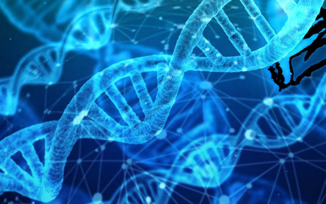 I successi del progetto di genomica finanziato da AIL Milano